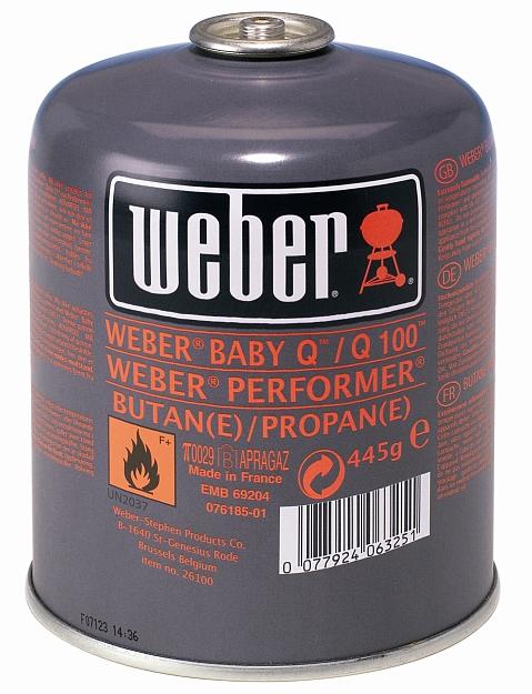Weber Q100
